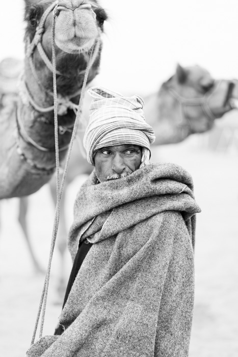 fine-art documentary camel-portrait